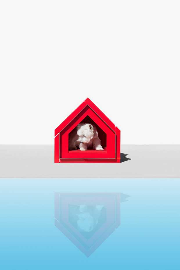 Touffu Pet House by Diabla Outdoor product image 2