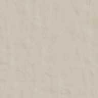 Neutra 02 Polvere